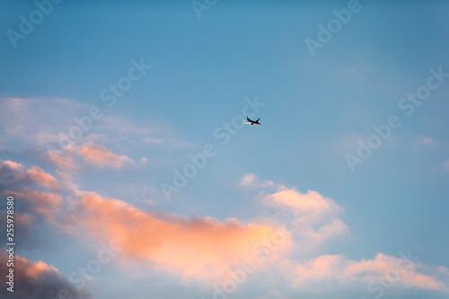 Fotografie, Obraz  上昇中の旅客機
