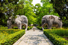 Elephant Statues In The Sacred...