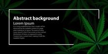 Green Cannabis Leaf Drug Marijuana Herb Background. Vector Marijuana Frame Cannabis Green Leaf. Vector Illustration