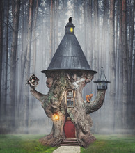 Fairy Mystery Tree House In Fantasy Forest