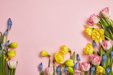 Top View Of Fresh Pink Tulips, Blue Hyacinths And Yellow Daffodils On Pink Background