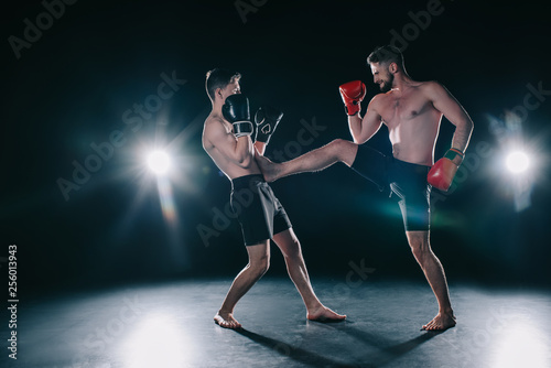 Obrazy MMA   shirtless-muscular-mma-fighter-in-boxing-gloves-kicking-another-in-torso