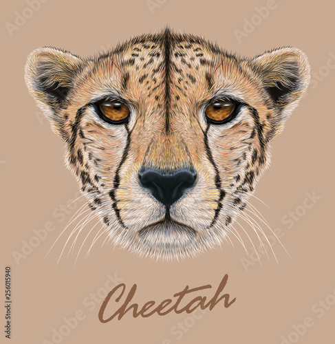 Leinwand Poster Cheetah animal cute face