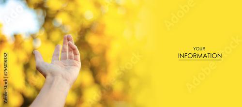 Fotografía  Empty female hand spring autumn nature pattern blur background