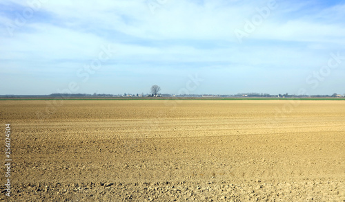 Dry ground of the plain during the great summer drought Canvas Print