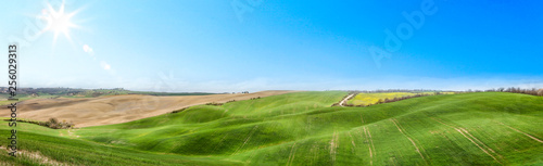 Foto auf Leinwand Pool Spring landscape of Tuscany and free space for your decoration.