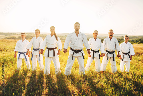 Karate group in white kimono, workout in field Wallpaper Mural