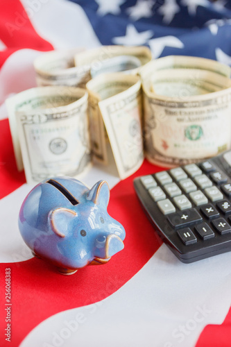 Piggy bank and American dollars on the national flag of United States of America, background - 256068383