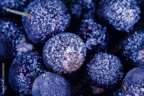 Fotografie, Obraz  Frozen berry food and blueberry delicious dessert,  summer.