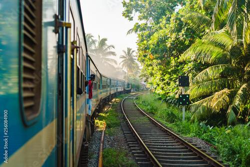 Fototapeta Ella to Kandy among tea plantations in highlands of Sri Lank