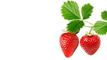Red Fresh Tasty Strawberry