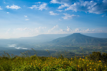 Beautiful Landscape Mountain T...