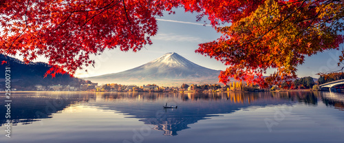 Poster Bergen Colorful Autumn Season and Mountain Fuji with morning fog and red leaves at lake Kawaguchiko is one of the best places in Japan