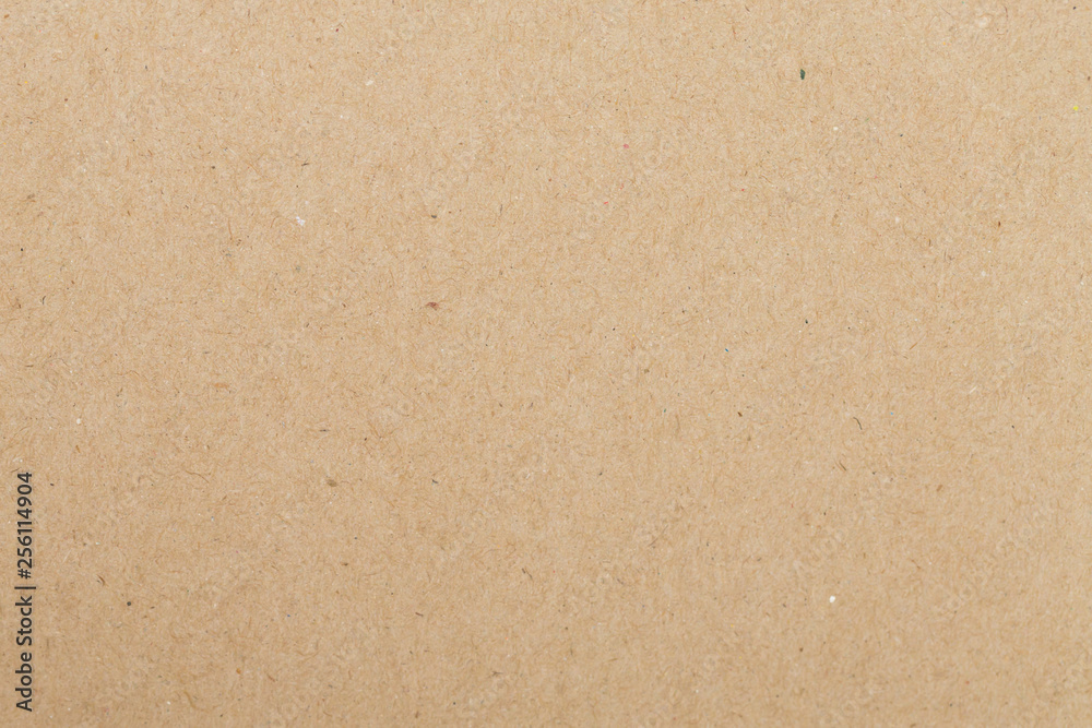 Fototapeta Texture Sheet of brown paper