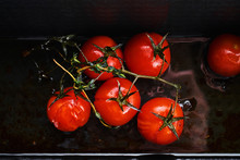 Overhead View Of Roasted Tomatoes