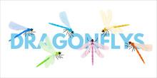 Dragonflies Cartoon Vector Word Concept Banner
