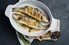 Grilled Sea Bass. Black Backgr...
