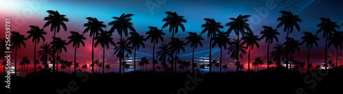 Tablou Canvas Night landscape with stars, sunset, stars