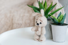A Knitted Beige Bunny Stands N...