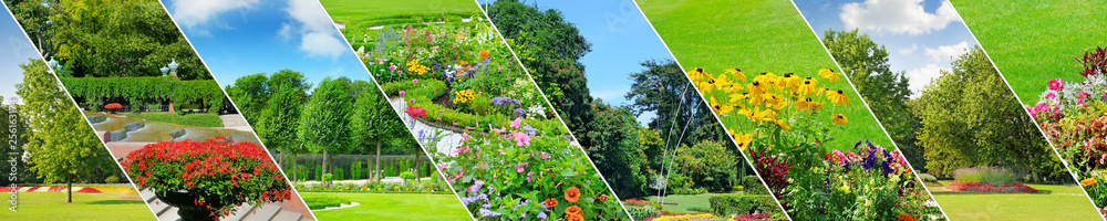 Fototapeta Spring gardens with beautiful flowers and lawns. Panoramic collage. Wide photo.