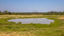 Waterhole In Savanna Area