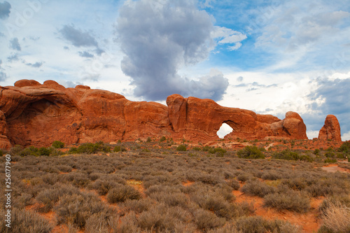 Stampa su Tela  Arches National Park, Moab,Utah,USA.