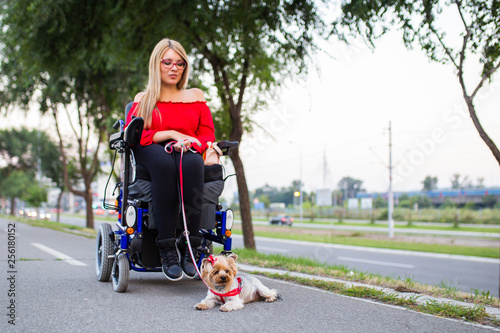 Poster Dogs Beautiful young woman on a wheelchair enjoying outdoors with her dog.