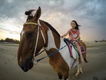 Asian Little Girl Riding A Hor...