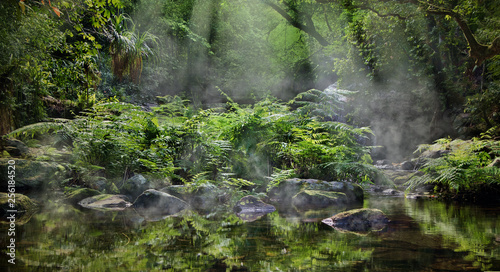 Recess Fitting Fantasy Landscape A magic morning in the jungle. Morning mist rising over the creek, several sunbeams lighting down the tropical plants. The Stoney Creek, Kamerunga, Cairns, Far North Queensland, Australia.