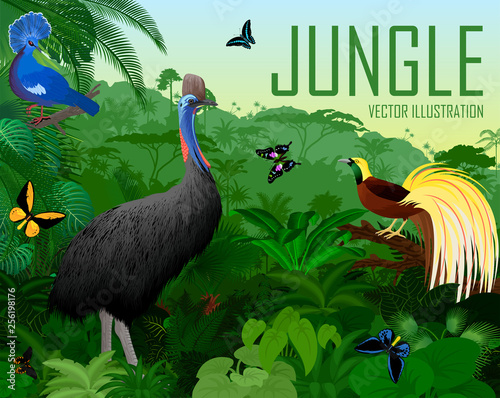 Photo Vector Papua New Guinea jungle forest with  victoria crowned pigeon, cassowary,