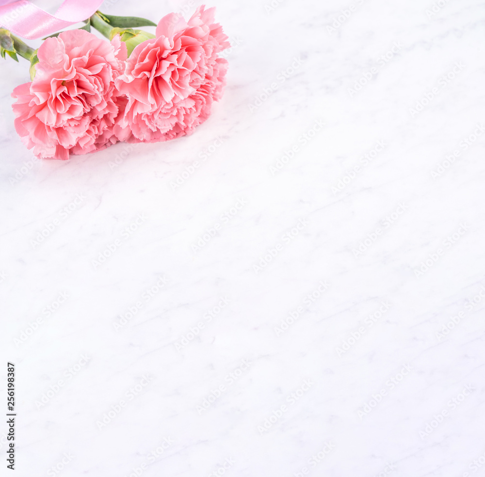 Fototapeta May mothers day handmade giftbox idea concept, beautiful blooming carnations with baby pink ribbon bow gift isolated on modern marble desk, close up, copy space, mock up - obraz na płótnie