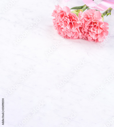 Fototapeta May mothers day handmade giftbox idea concept, beautiful blooming carnations with baby pink ribbon bow gift isolated on modern marble desk, close up, copy space, mock up obraz na płótnie