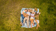 canvas print picture - Top vertical aerial view of group of friends lay down on the meadow and enjoy the friendship playing a guitar and relaxing all together - people  friends in outdoor leisure activity