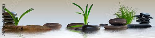 Wandbild mit Gräser, Schmucksteine und Wasser