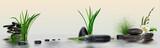 Fototapeta Kamienie - Wandbild mit Gräser, Blüten, Schmucksteine und Wasser