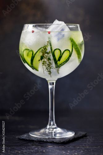 Photographie Gin and tonic with cucumber hearts and thyme