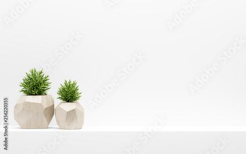 Fotografia green plants in wooden pots on white shelf