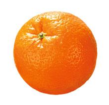 Ganze Orange