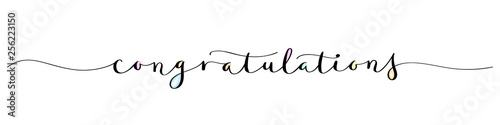 CONGRATULATIONS brush calligraphy banner with watercolor Canvas-taulu