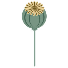 Poppy Flat Illustration