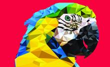 Low Poly Macaw