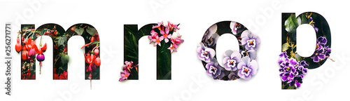 Staande foto Lente Flower font letter m, n, o, p Create with real alive flowers and Precious paper cut shape of alphabet. Collection of brilliant bloom flora font for your unique text, typography with many concept ideas