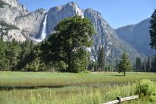 Yosemite National Park, CA., U...