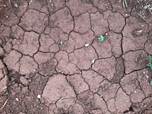 Dry Cracked Earth Ground Soil ...