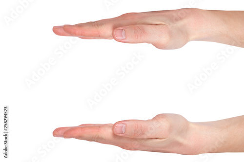 Fotomural Male hands measuring something, isolated on white