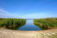 Backwaters Near Balm In Benz, Usedom, Mecklenburg-Western Pomerania, Germany, Europe