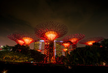 Singapore, Marina Bay, Gardens By The Bay, Super Trees At Night