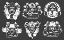 Vintage Skateboarding Emblems ...
