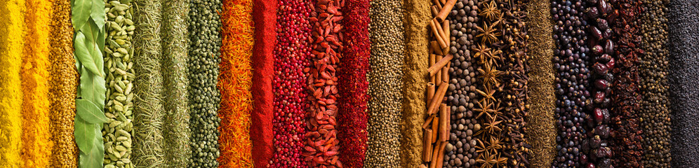 FototapetaPanorama spices and herbs for food labels. Seasonings and flavors background