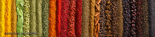 Panorama spices and herbs for food labels. Seasonings and flavors background